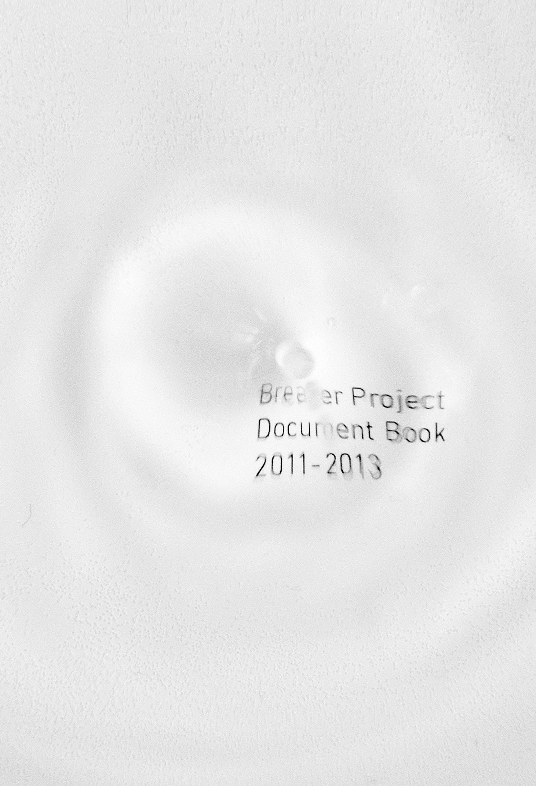 documentbook2011-2013.jpg